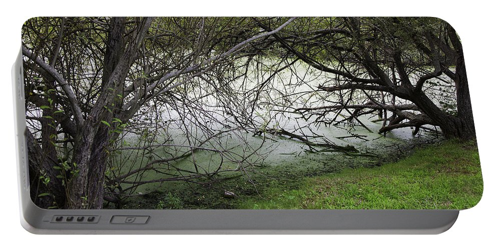 Tree Portable Battery Charger featuring the photograph Lakeside View 1 by Madeline Ellis