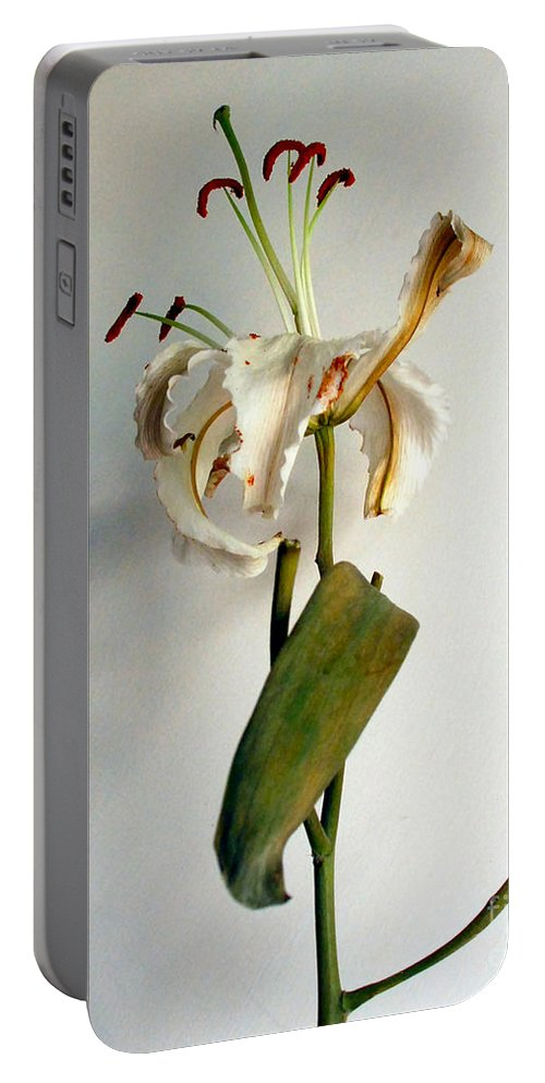 Flowers Portable Battery Charger featuring the photograph Last Moments by Pravine Chester