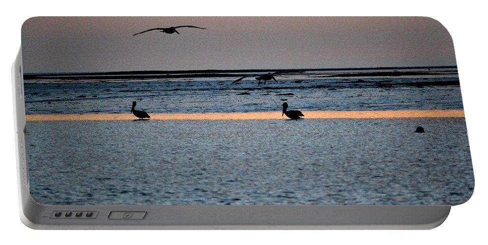 Pelicans Portable Battery Charger featuring the photograph Late Comers by Kari Tedrick