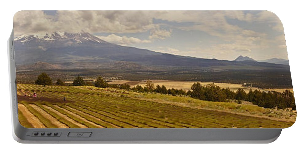 Panorama Portable Battery Charger featuring the photograph Lavender Farm Panorama by Mick Anderson
