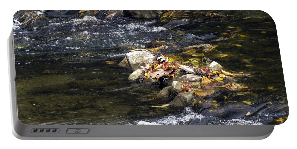 Stream Portable Battery Charger featuring the photograph Leaf Collection by Darleen Stry