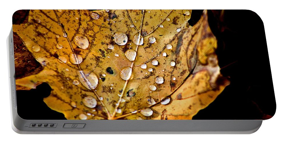 Fall Leaf With Water Droplets Portable Battery Charger featuring the photograph Leafwash by Burney Lieberman