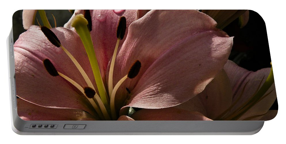 Flower Portable Battery Charger featuring the photograph Leftover Lily by Trish Tritz