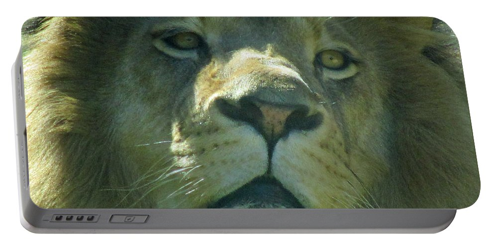 Lion Portable Battery Charger featuring the photograph Leo,lion by Sandra Reeves