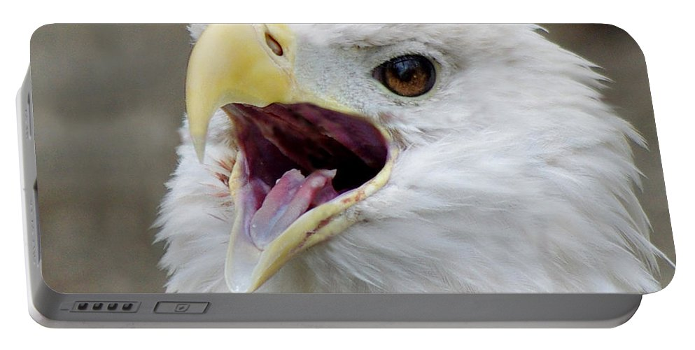 Bald Eagle Portable Battery Charger featuring the photograph Let Freedom Ring by Jenny Gandert