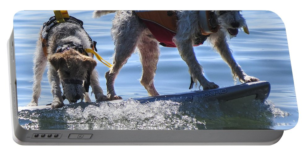 Dog Portable Battery Charger featuring the photograph Let's Surf Dude by Darleen Stry