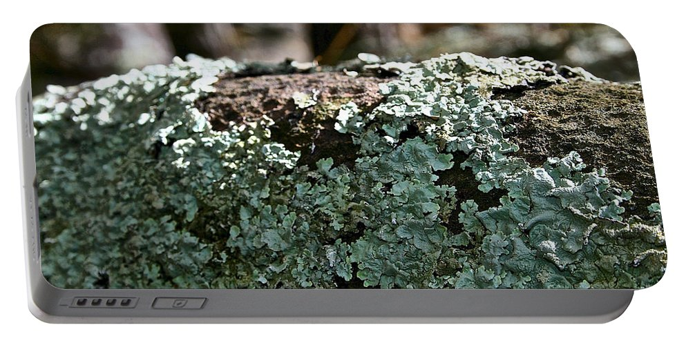 Outdoors Portable Battery Charger featuring the photograph Lichens Lace by Susan Herber