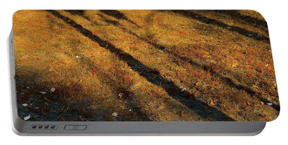 Autumn Portable Battery Charger featuring the photograph Lights And Shadows by Michael Goyberg
