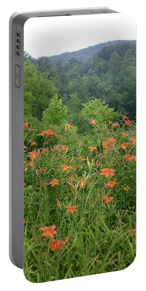 Lillies Portable Battery Charger featuring the photograph Lillies 2 by Leann DeBord