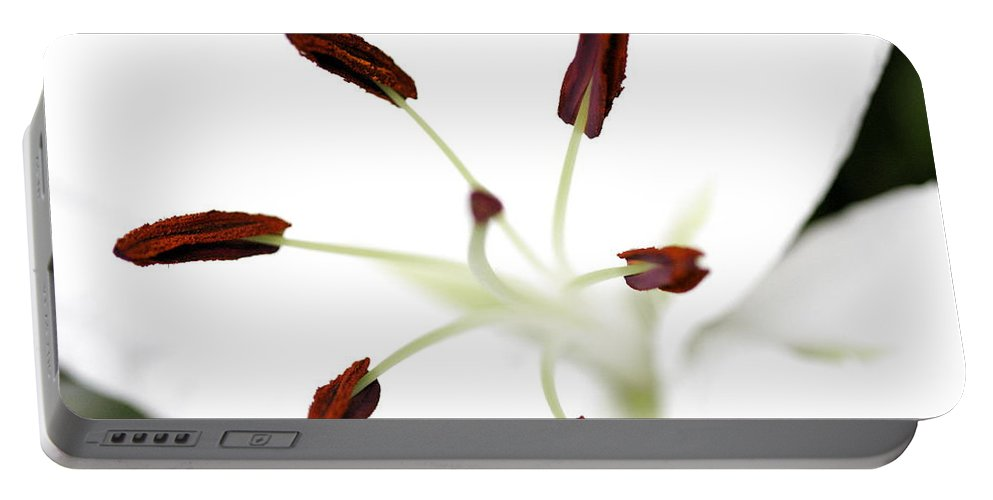 Lily Portable Battery Charger featuring the photograph Lily Center by Angela Rath