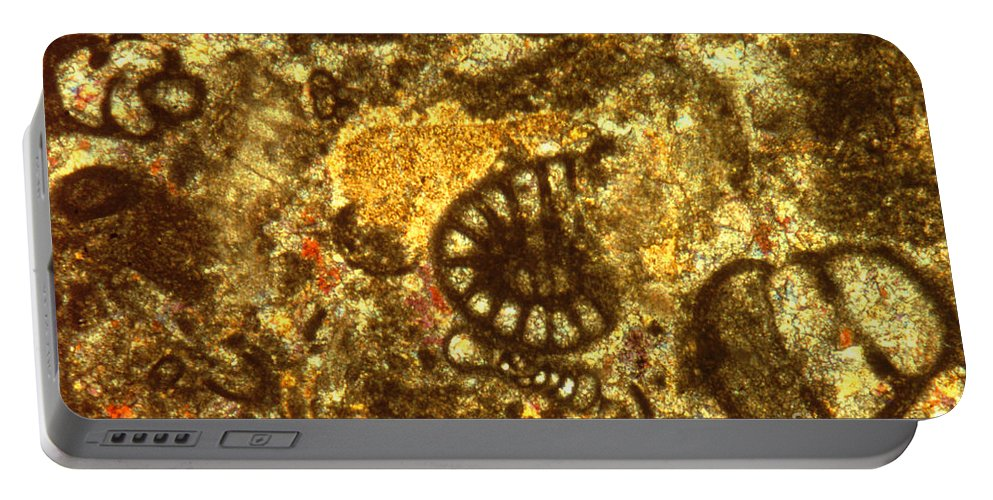 Light Microscopy Portable Battery Charger featuring the photograph Limestone by M. I. Walker