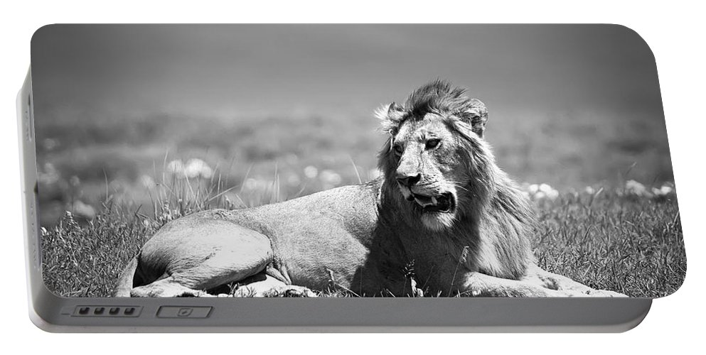 Africa Portable Battery Charger featuring the photograph Lion King In Black And White by Sebastian Musial