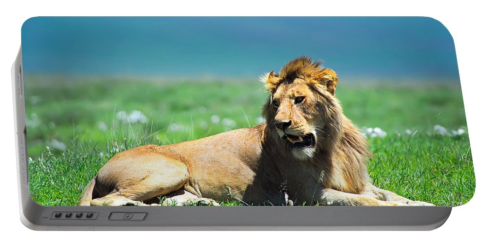 Africa Portable Battery Charger featuring the photograph Lion King by Sebastian Musial