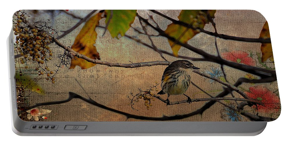 Bird Portable Battery Charger featuring the photograph Little Bird by Todd Hostetter