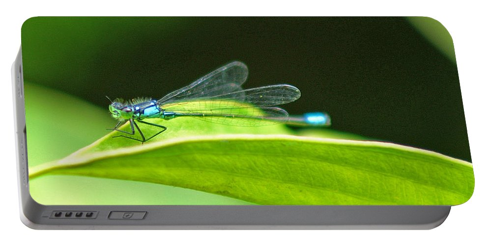Dragonfly Portable Battery Charger featuring the photograph Little Dragonfly by Randy Harris