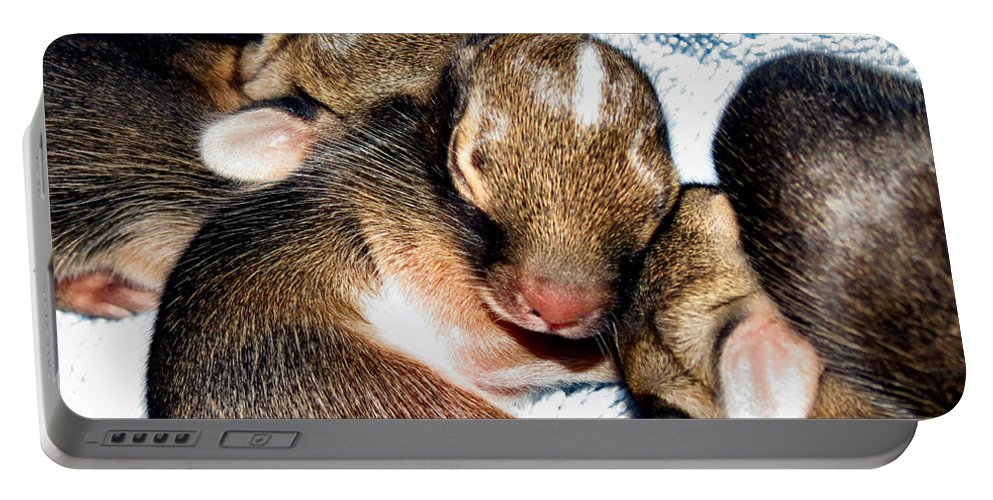 Bunny Portable Battery Charger featuring the photograph Little Sunshine by Art Dingo