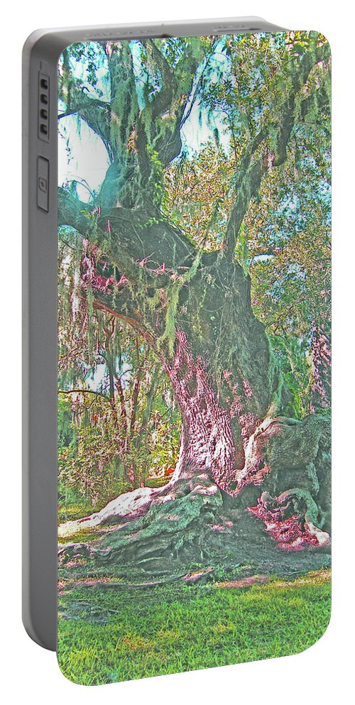 Live Oak Portable Battery Charger featuring the photograph Live Oak On The Teche by Lizi Beard-Ward