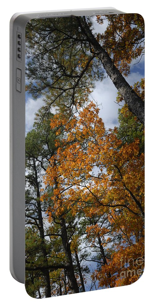 Autumn Foliage Portable Battery Charger featuring the photograph Lofty by Betty LaRue