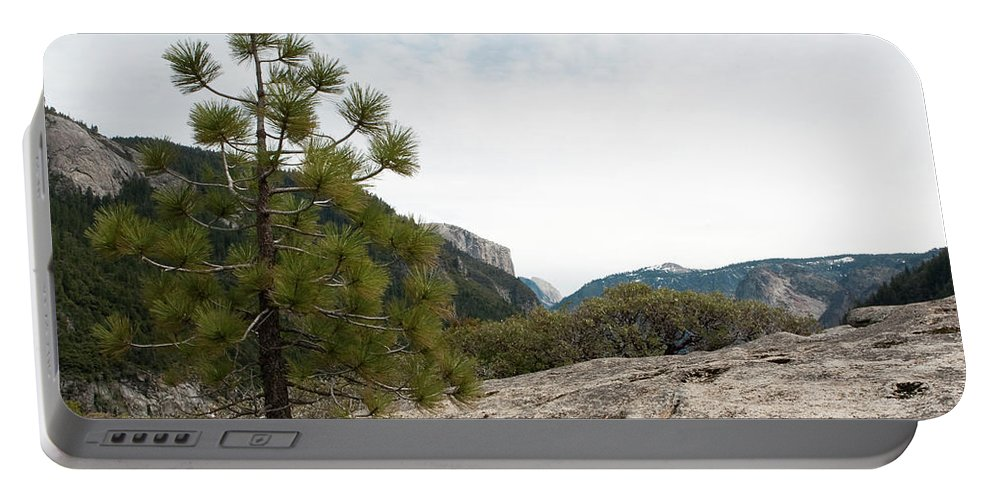 Yosemite National Park Portable Battery Charger featuring the photograph Lonely Pine by Lorraine Devon Wilke