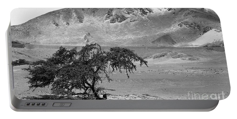 Black And White Portable Battery Charger featuring the photograph Lonely Tree by Darcy Michaelchuk