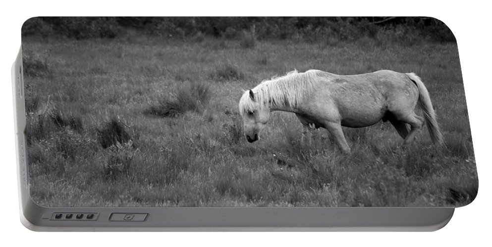 Pony Portable Battery Charger featuring the photograph Lonesome Pony by Lori Tambakis