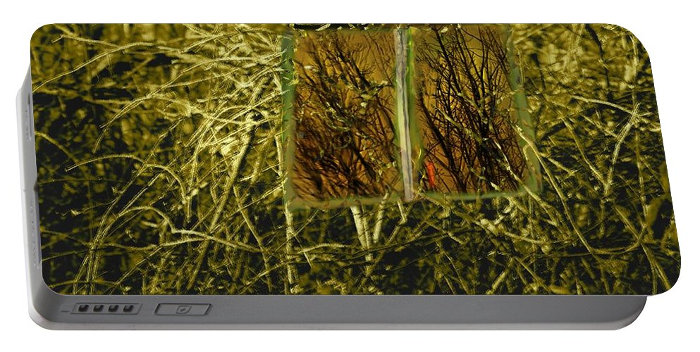Surreal Portable Battery Charger featuring the photograph Look And Seek by Susan Capuano
