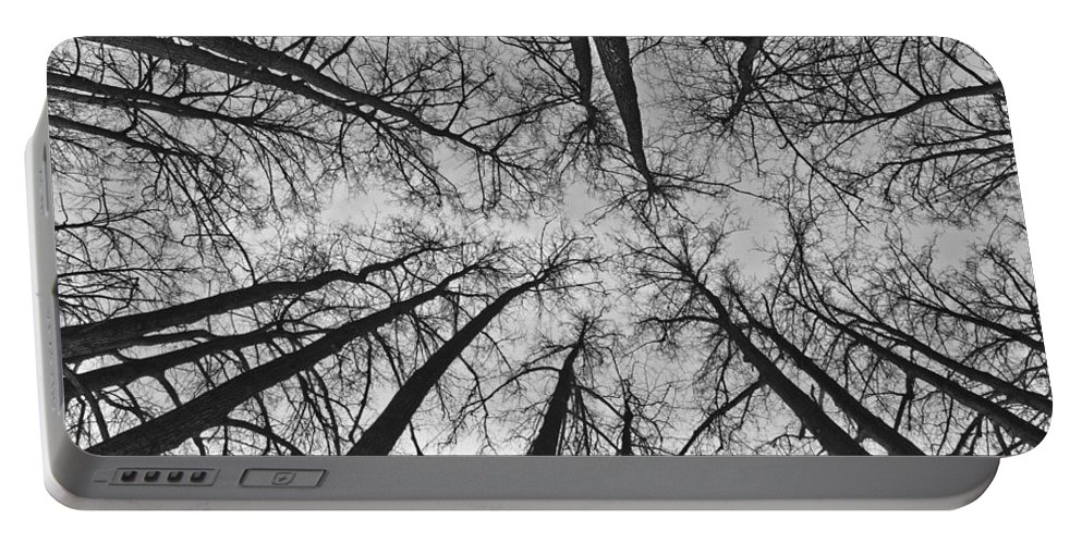Landscape Portable Battery Charger featuring the photograph Look Up by Michael Goyberg