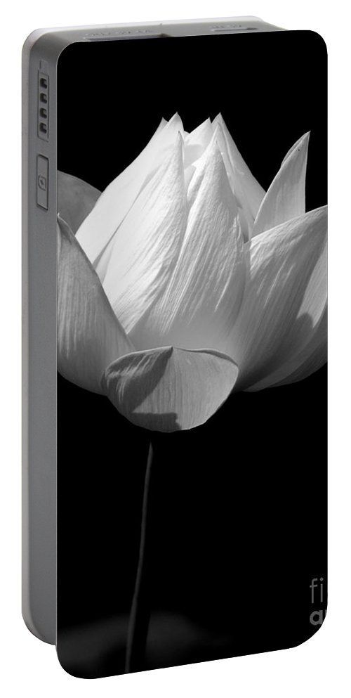 Floral Portable Battery Charger featuring the photograph Lotus Bw by Mark Gilman