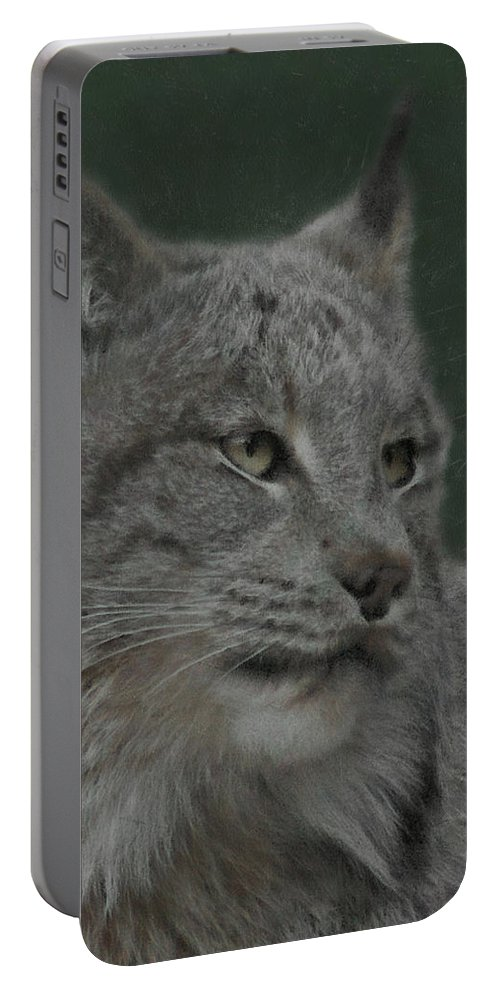Lynx Portable Battery Charger featuring the digital art Lynx Painterly by Ernie Echols