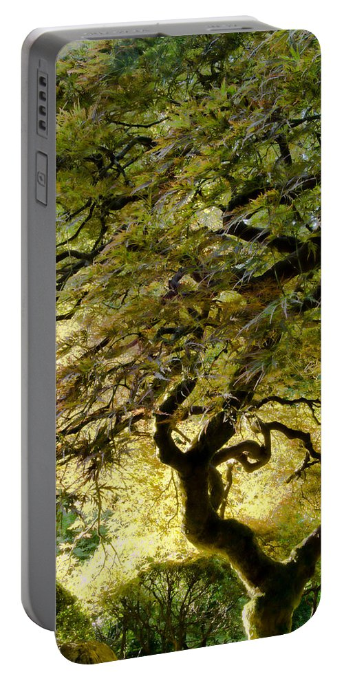 Tree Portable Battery Charger featuring the photograph Magical Tree by Don Schwartz