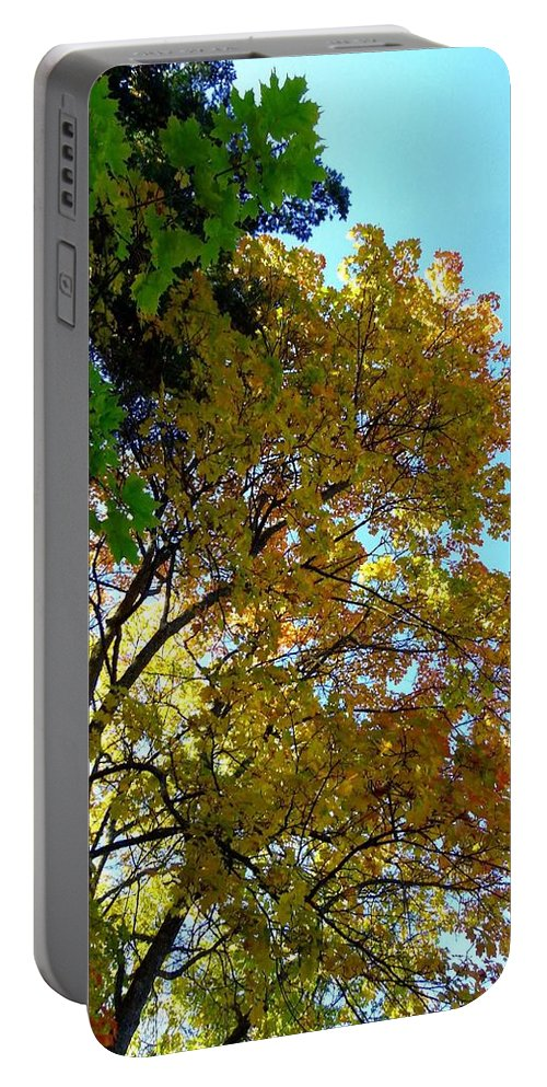 Magnificent Maples Portable Battery Charger featuring the photograph Magnificent Maples by Will Borden