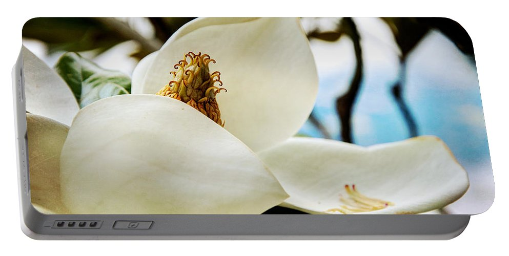 Magnolia Portable Battery Charger featuring the photograph Magnolia by Lisa Knechtel