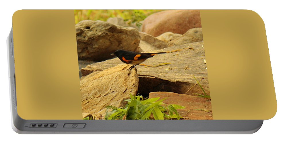 Roena King Portable Battery Charger featuring the photograph Male American Redstart On The Rocks by Roena King