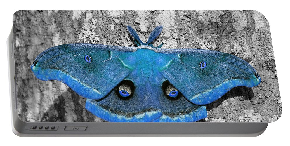 Moth Portable Battery Charger featuring the photograph Male Moth Light Blue by Al Powell Photography USA