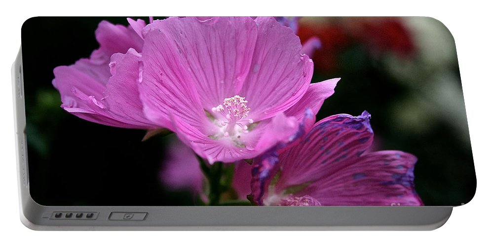 Floral Portable Battery Charger featuring the photograph Mallow by Susan Herber
