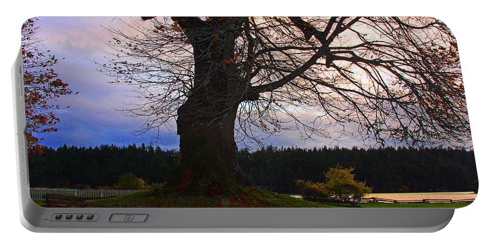 Trees Canvas Print Portable Battery Charger featuring the photograph Maple Evening by Marie Jamieson