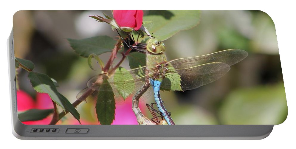 Dragonfly Portable Battery Charger featuring the photograph Mating Dragonfly by Michelle Powell