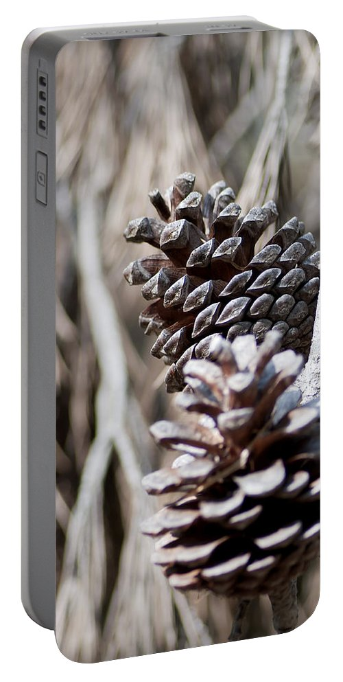Up Portable Battery Charger featuring the photograph Dry Mediterranean Pinecone With Winter Colors by Pedro Cardona Llambias