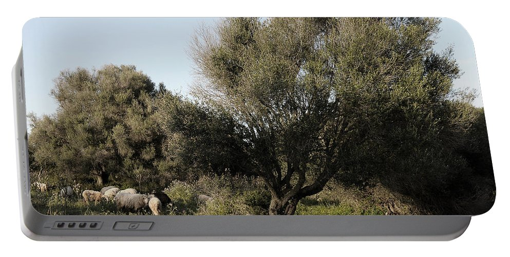 Nobody Portable Battery Charger featuring the photograph Mediterranean Wood Wiew by Pedro Cardona Llambias