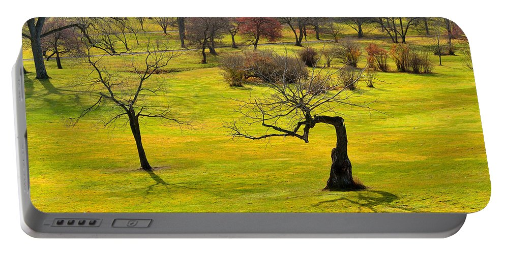Trees Portable Battery Charger featuring the photograph Middle Earth by Joshua McCullough