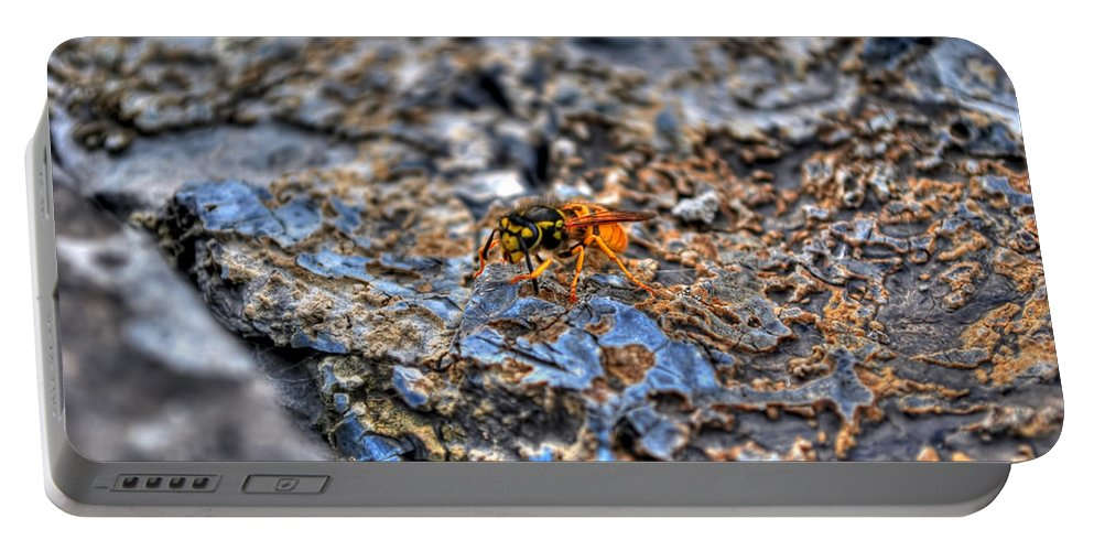 Portable Battery Charger featuring the photograph Mind Your Own Buzznuss by Michael Frank Jr