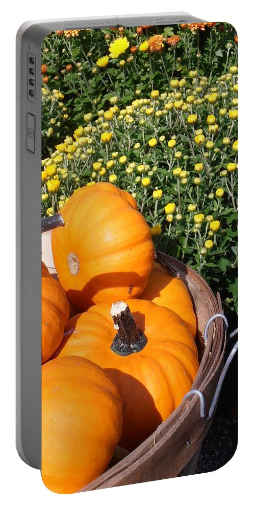 Pumpkins Portable Battery Charger featuring the photograph Mini Pumpkins by Kimberly Perry