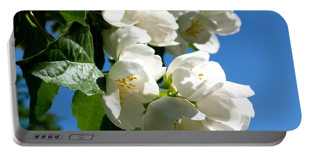 Mock Orange Portable Battery Charger featuring the photograph Mock Orange 4 by Will Borden
