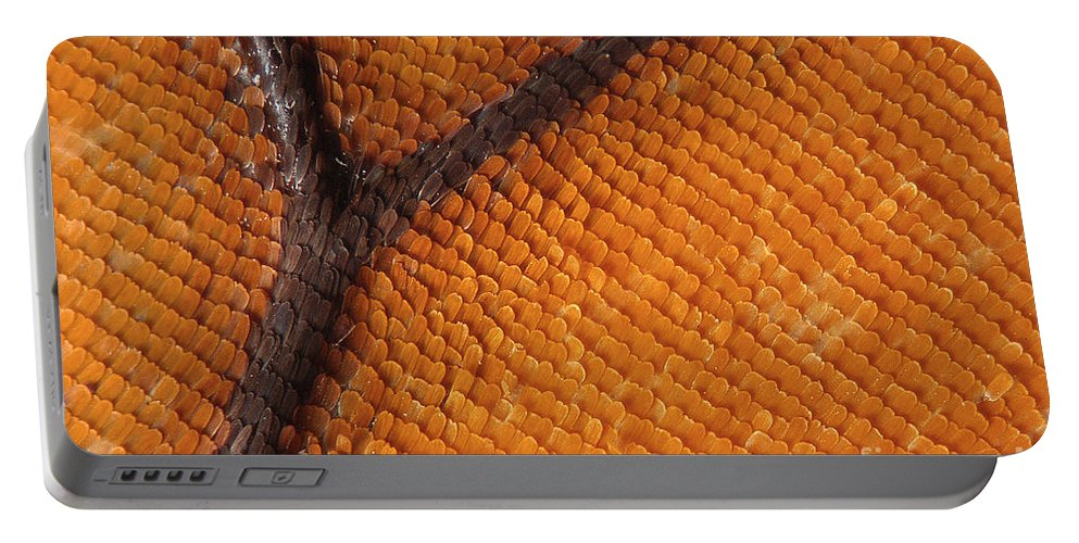 Butterfly Portable Battery Charger featuring the photograph Monarch Butterfly Wing Scales by Raul Gonzalez Perez