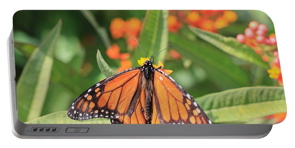 Monarch Portable Battery Charger featuring the photograph Monarch Sipping by Heidi Smith