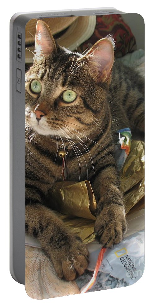 Cat Portable Battery Charger featuring the painting Monty by Jolanta Anna Karolska
