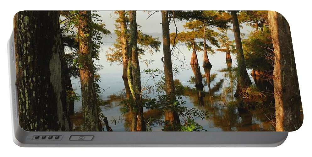 Swamps Portable Battery Charger featuring the photograph Morning In The Swamps by Robert Brown