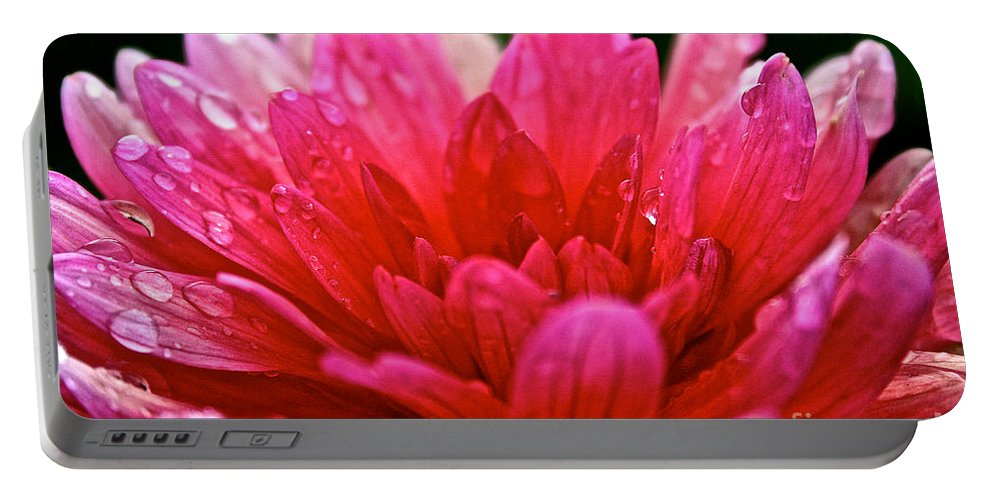 Floral Portable Battery Charger featuring the photograph Morning Rain by Susan Herber