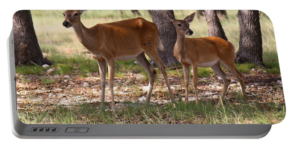 Roena King Portable Battery Charger featuring the photograph Mother And Yearling Deer by Roena King