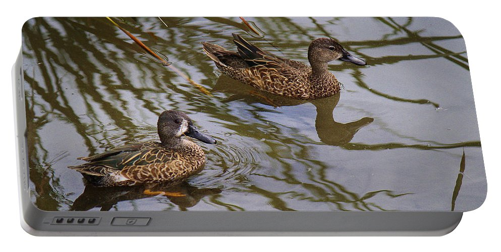Roena King Portable Battery Charger featuring the photograph Mr And Mrs Blue Wing Teal by Roena King